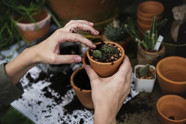 Pracownicze ogródki działkowe